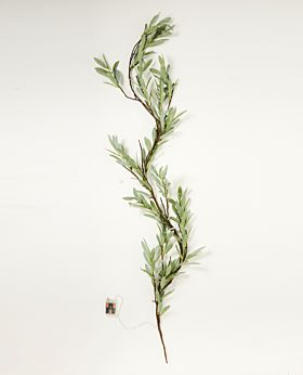 Eucalyptus LED garland