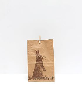 Meadow Easter gift bag - rabbit in grass