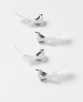 Noir birds - white spots with silver glitter tail