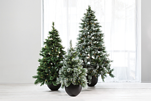 Easy tree styling tips