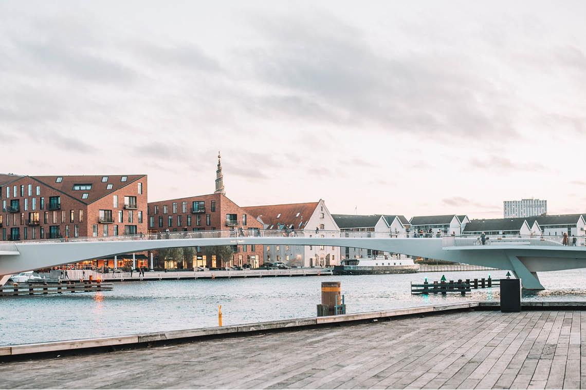 Postcards from Papaya: Copenhagen Calling